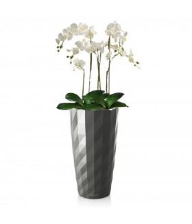 Орхидея-Фаленопсис в кашпо с системой полива